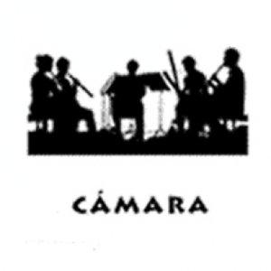 Profile picture for Música de Cámara