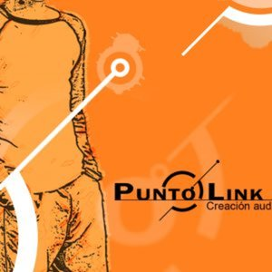 Profile picture for Punto Link