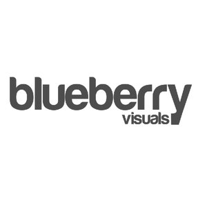 Profile picture for Blueberry Visuals
