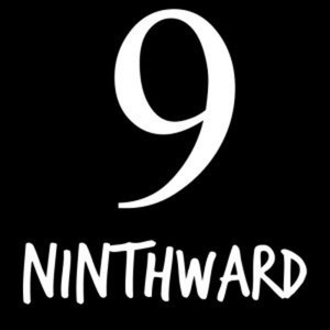 Profile picture for Ninthward Skis