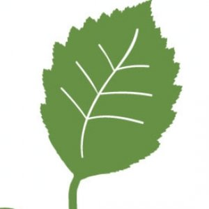 Profile picture for children &amp; nature network