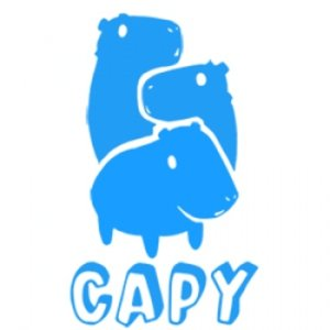 Profile picture for CAPY