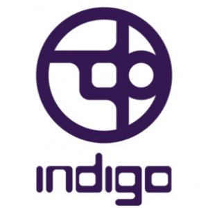 Profile picture for Indigo
