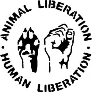 Profile picture for liberation