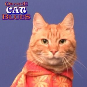 Profile picture for Orange Cat Blues