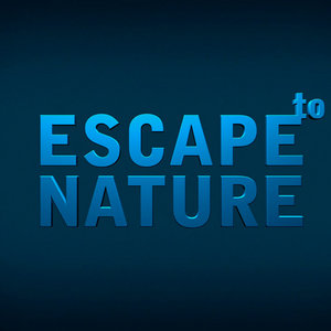 Profile picture for Escape to Nature