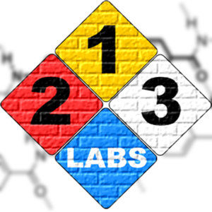 Profile picture for 213Labs