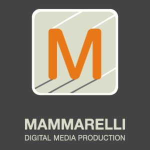 Profile picture for Chris Mammarelli