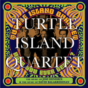 Profile picture for Turtle Island Quartet