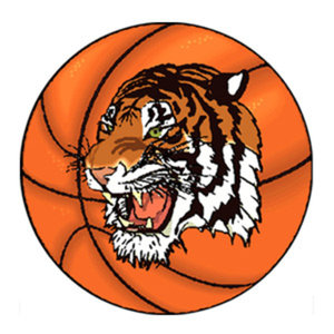 Profile picture for Taunton Tigers