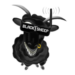 Profile picture for RiSCyD : TeamBlackSheep