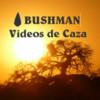 BUSHMAN VIDEOS DE CAZA