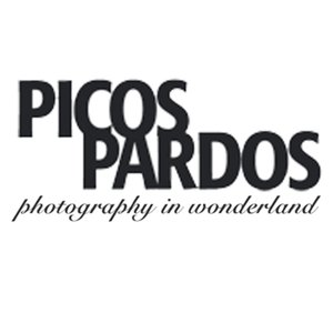 Profile picture for PICOSPARDOS