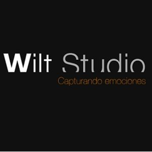 Profile picture for Wilt Studio