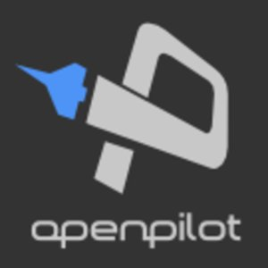 Profile picture for OpenPilot