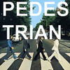 Pedestrian Recordings