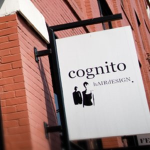 Profile picture for Cognito