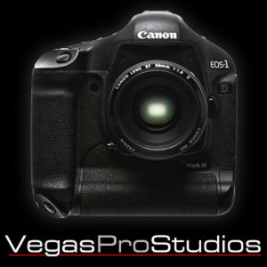 Profile picture for Vegas Pro Studios