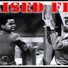 Raised Fist Propaganda