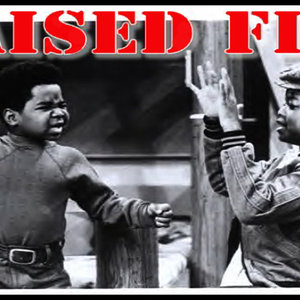 Profile picture for Raised Fist Propaganda