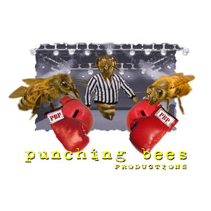 Profile picture for punching bees PRODUCTIONS