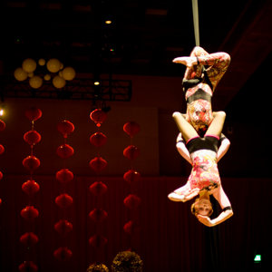 Profile picture for Pendulum Aerial Arts