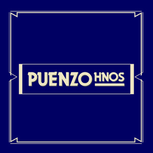 Profile picture for Puenzo Hnos