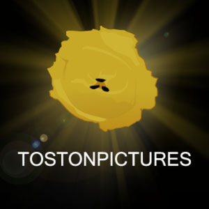 Profile picture for TOSTONPICTURES