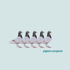 Profile picture for Pigeon Projects