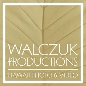 Profile picture for Walczuk Productions