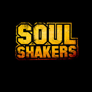 Profile picture for Soul Shakers