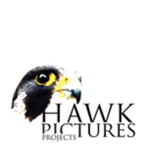 Profile picture for Jimmy Hawk