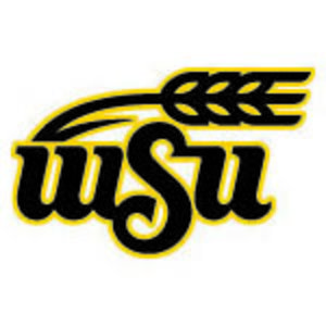 Profile picture for WSU College of Engineering