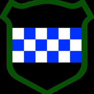 Profile picture for 99th RSC PAO Team