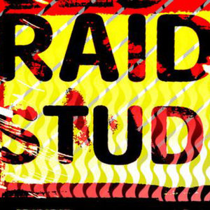 Profile picture for Raid Studios