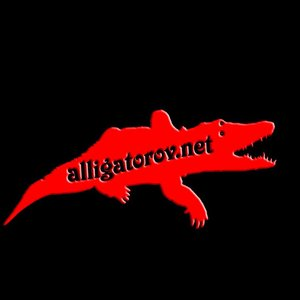Profile picture for Alligator-studio