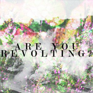 Profile picture for Are You Revolting