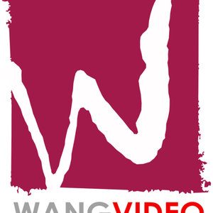 Profile picture for Wang Videography