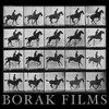 BORAK FILMS