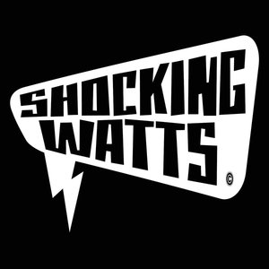 Profile picture for ShockingWatts