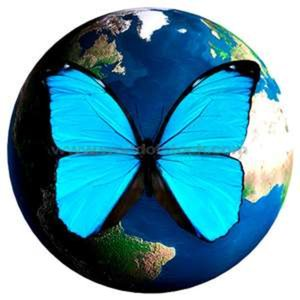 Profile picture for Butterfly Jewel