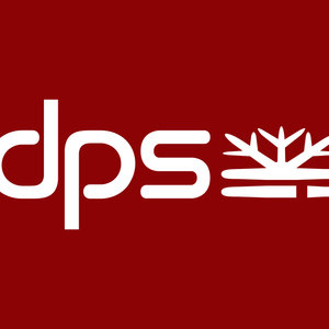 Profile picture for DPS SKIS