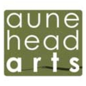 Profile picture for Aune Head Arts