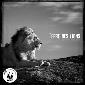 Profile picture for Laurent Baheux
