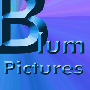 Profile picture for BlumPictures