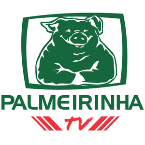 Profile picture for PalmeirinhaTV