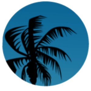 Profile picture for Infosec Island
