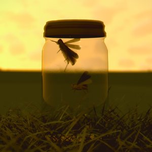 Profile picture for Jar of Grasshoppers