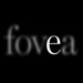 fovea exhibitions