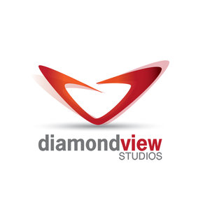 Profile picture for Diamond View Studios